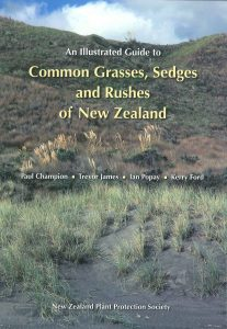 Book Cover: An Illustrated Guide to Common Grasses, Sedges and Rushes of New Zealand
