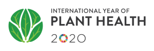 International_year_of_plant_health